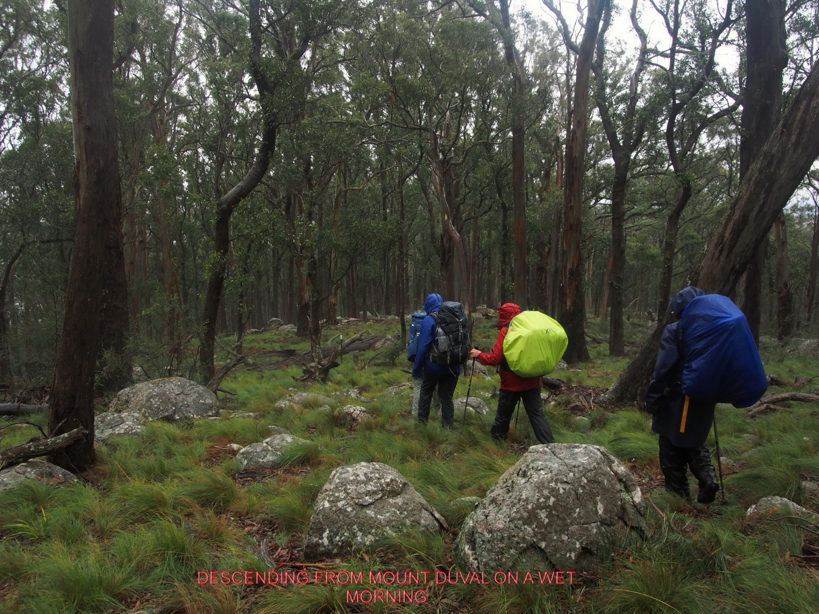 DESCENDING FROM MOUNT DUVAL ON A WET MORNING