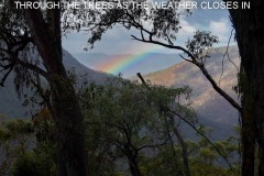 A RAINBOW IN THE GORGE OF THE MACLEAY RIVER THROUGH THE TREES DESCENDING THE SPUR