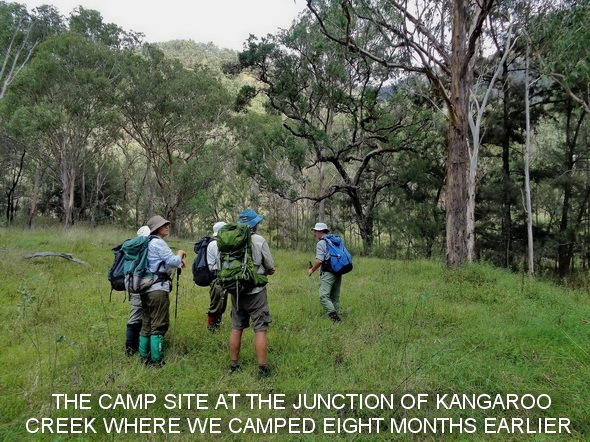STOPPED AT THE CAMP SITE AT THE JUNCTION OF KANGAROO CREEK WHERE WE CAMPED EIGHT MONTHS EARLIER