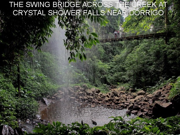 THE SWING BRIDGE ACROSS THE CREEK AT CRYSTAL SHOWER FALLS